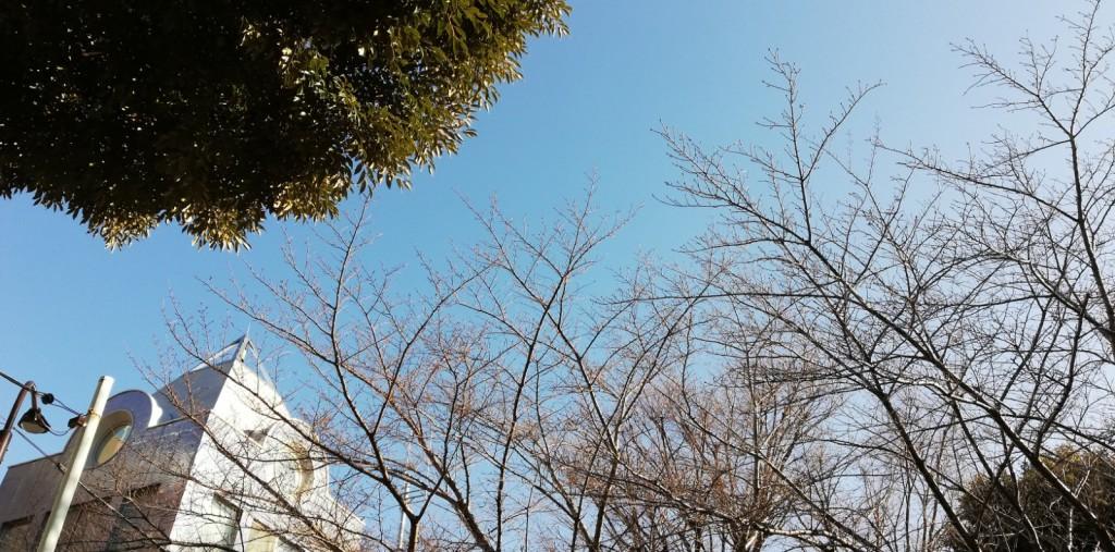 2月消防署の鐘楼と空